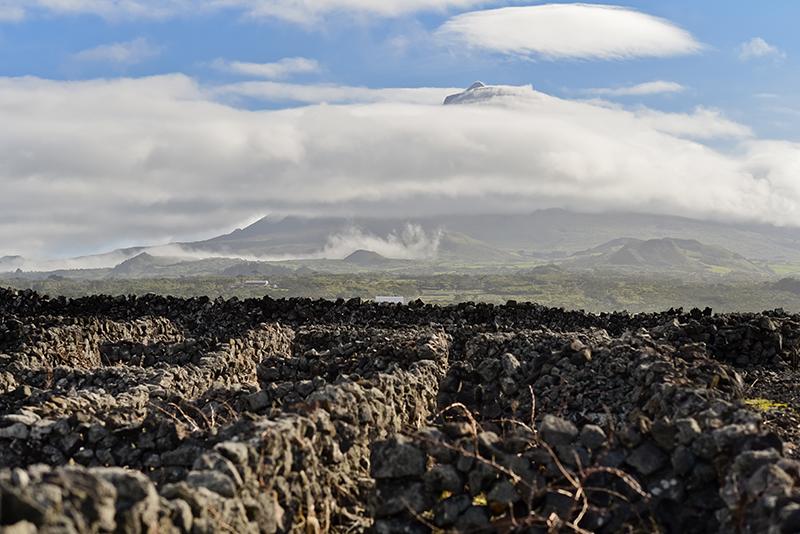 Adega do Vulcão