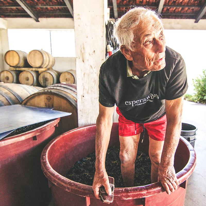 Espera Wines
