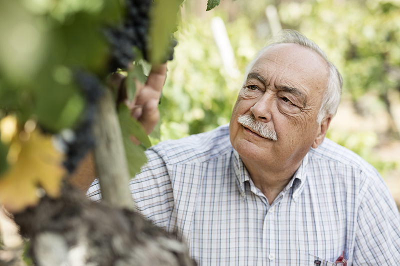 Luís Pato Winegrower