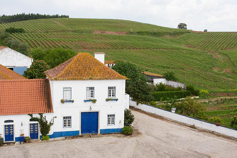 Quinta do Olival da Murta