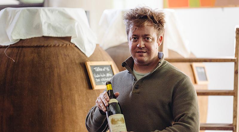 Terracotta Wine Imports